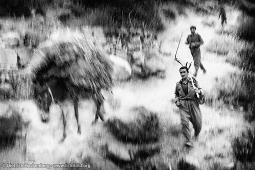Rückkehr von der Alm - Region Hakkari, Türkei 1991 - Foto © Dietrich Hackenberg