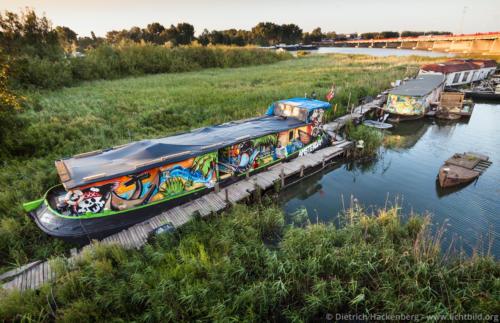 Hausboot im Schilf - Amsterdam-Zeeburg, Niederlande - Foto © Dietrich Hackenberg